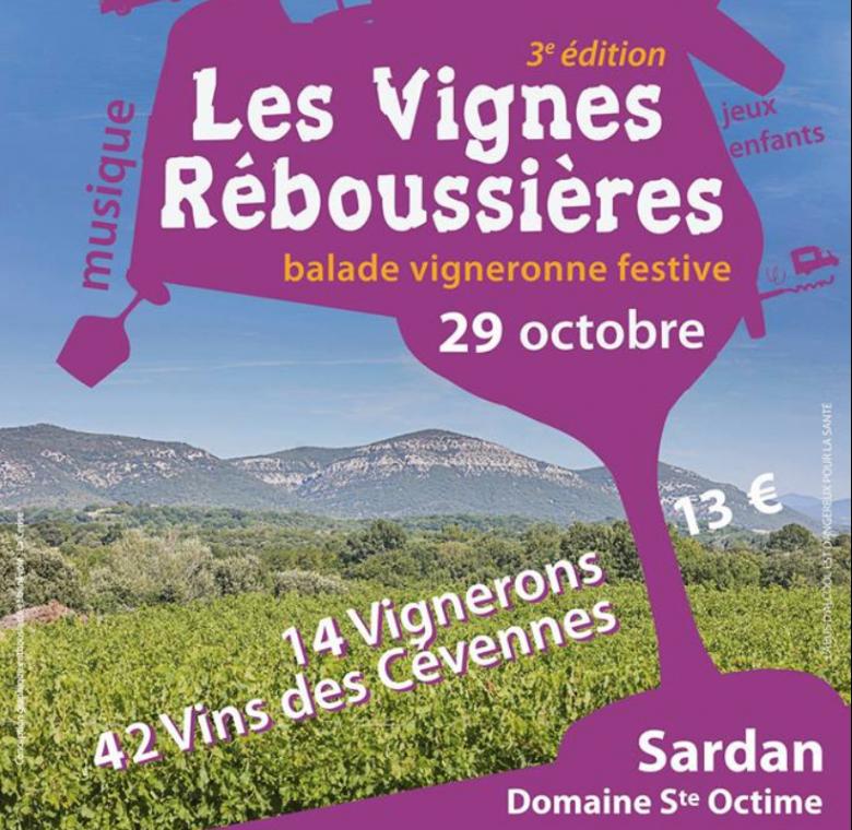 Vignes Reboussières 2017