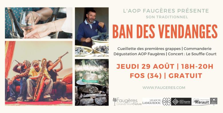 Ban des vendanges 2019 Faugères AOC