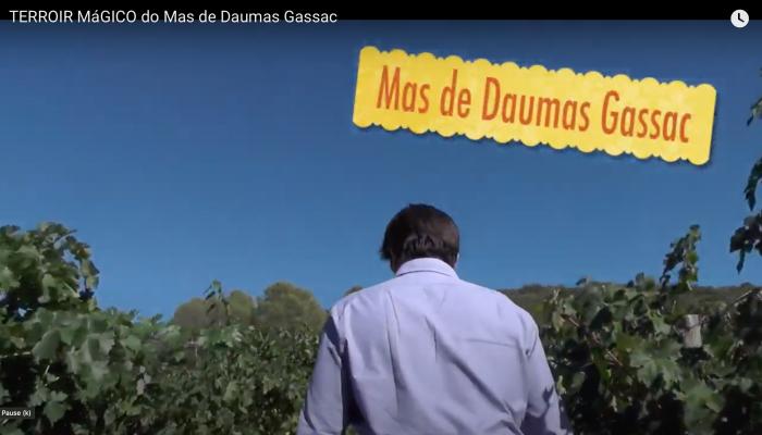 Le Mas de Daumas Gassac à travers les yeux de Basile Guibert (YouTube)
