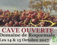 Portes ouvertes à Roquemale - octobre 2017 - BLOG Trinque Fougasse