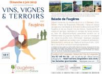 Vins Vignes et Terroir - 2 juin 2019 - Faugères