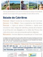 Vins, vignes et terrois à Cabrières 2019