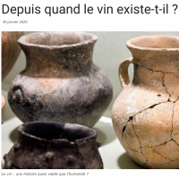 Depuis quand existe le vin ? - Vign'Ette janvier 2020