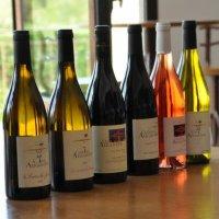 Sélection Bar à vins