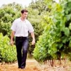 Le Bois des Anges - Jean-Yves Donnadieu - vigneron - vignes - chardonnay