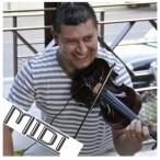 Paul Guta Midi