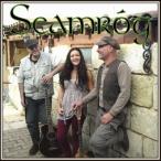 Seamrog