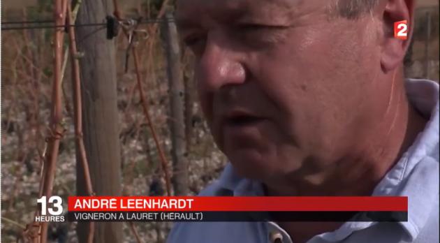 André Leenhardt - Grêle du 17 août 2016 au JT de France TV