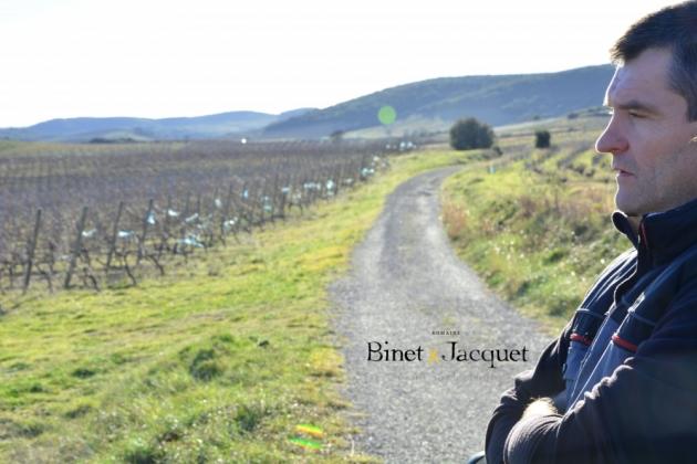 Balade au Domaine Binet-Jacquet - janvier 2015 - Patricia HUCZEK © (c)Patricia HUCZEK