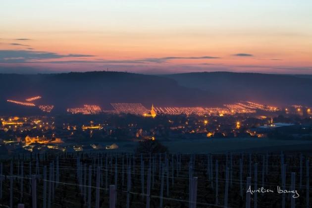 Bougies dans le vignoble de Chablis - lutte contre le gel - Blog Trinque Fougasse © Aurélien Ibanez
