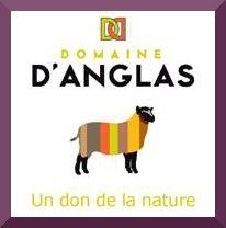 Domaine d'Anglas - logo