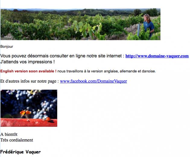 Domaine Vaquer - Website 2013
