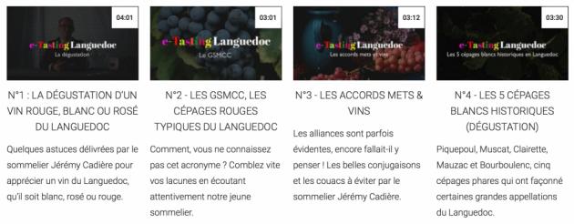 e-Tasting Languedoc - CIVL