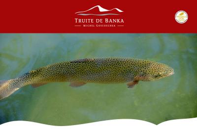 La Truite de Banka - Pays Basque