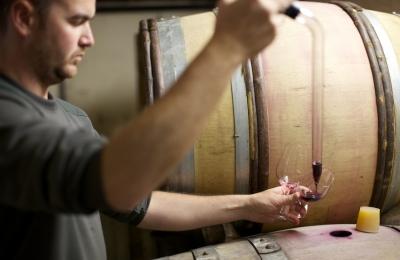 Les Vignes Oubliées vigneron