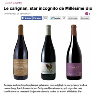 Millésime Bio - Le Carignan, star incognito de Millésime Bio - Terre de Vins - janvier 2014 - Mathieu Doumenge - RIMBERT - CÉBÈNE - GRAVILLAS