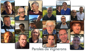 Paroles de vignerons