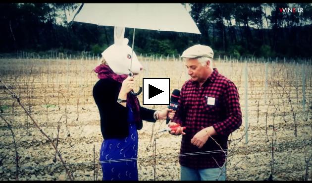 Pierre Clavel nous apprend comment et pourquoi tailler la vigne - Magazine WINE LR - Avril 2014 - Lapin