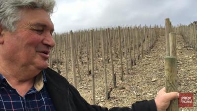 Pierre Gaillard à l'honneur du 18 au 23 avril 2016 avec le domaine Cottebrune en Faugères
