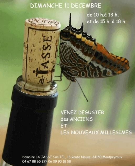 Portes Ouvertes Jasse Castel 2011