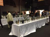Salon des Vins de Loire - Angers - 2015 - par Patricia HUCZEK