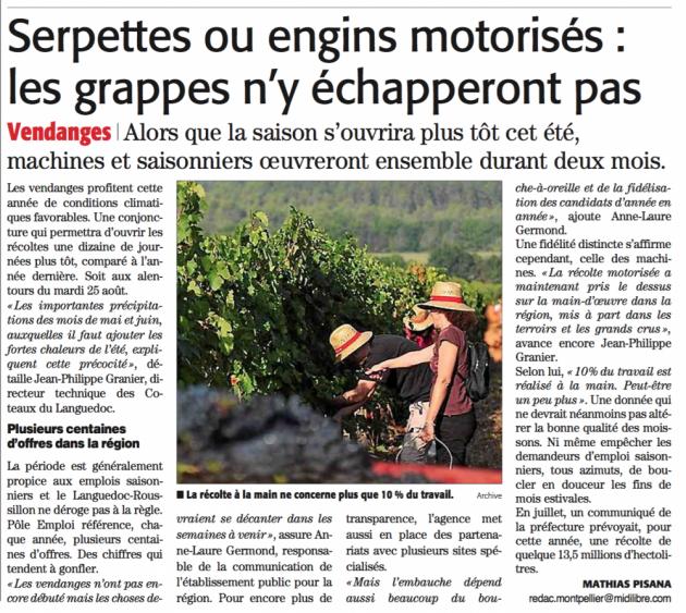 Vendanges précoces en Languedoc Roussillon - Midi Libre du 11 août 2015