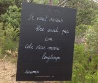 Vignes Buissonnières 2012 - il vaut mieux être...
