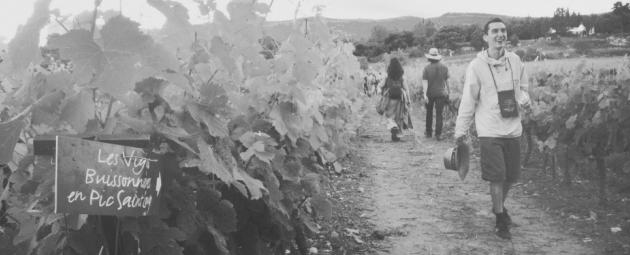 Vignes Buissonnières 2012 - Olivier Consuegra