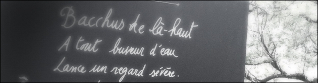 Vignes Buissonnières 2012 - Robespierre