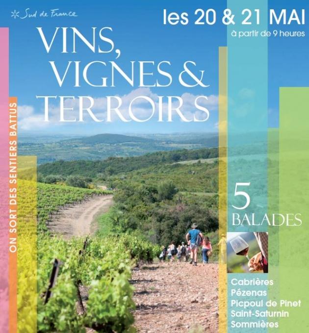 Vins, Vignes et Terroirs - 5 balades de l'AOC LANGUEDOC EN MAI 2017 - BLOG