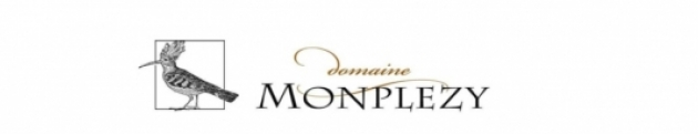 Voeux de Monplézy 2011